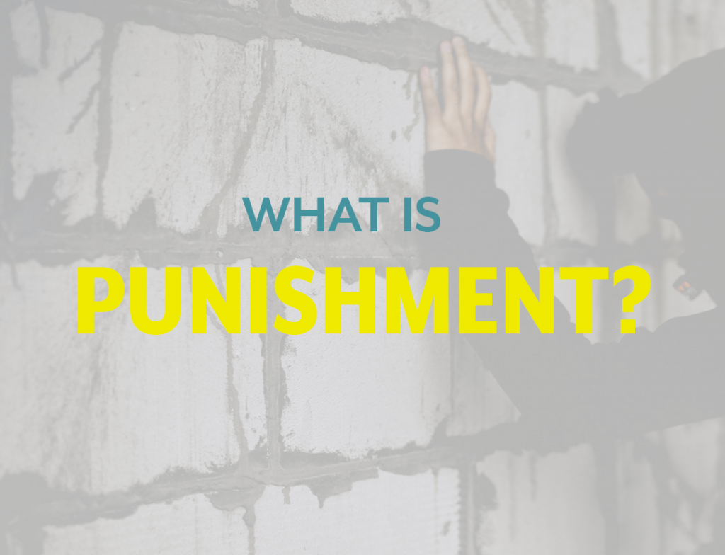 a person leans forward against a brick wall. On a transparent overlay the image reads what is punishment